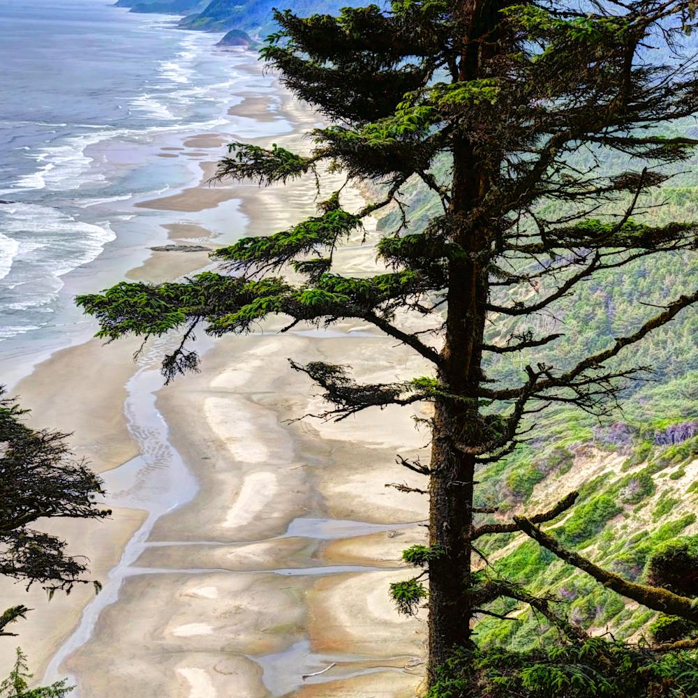Hobbit beach from heceta head oregon k5ind9