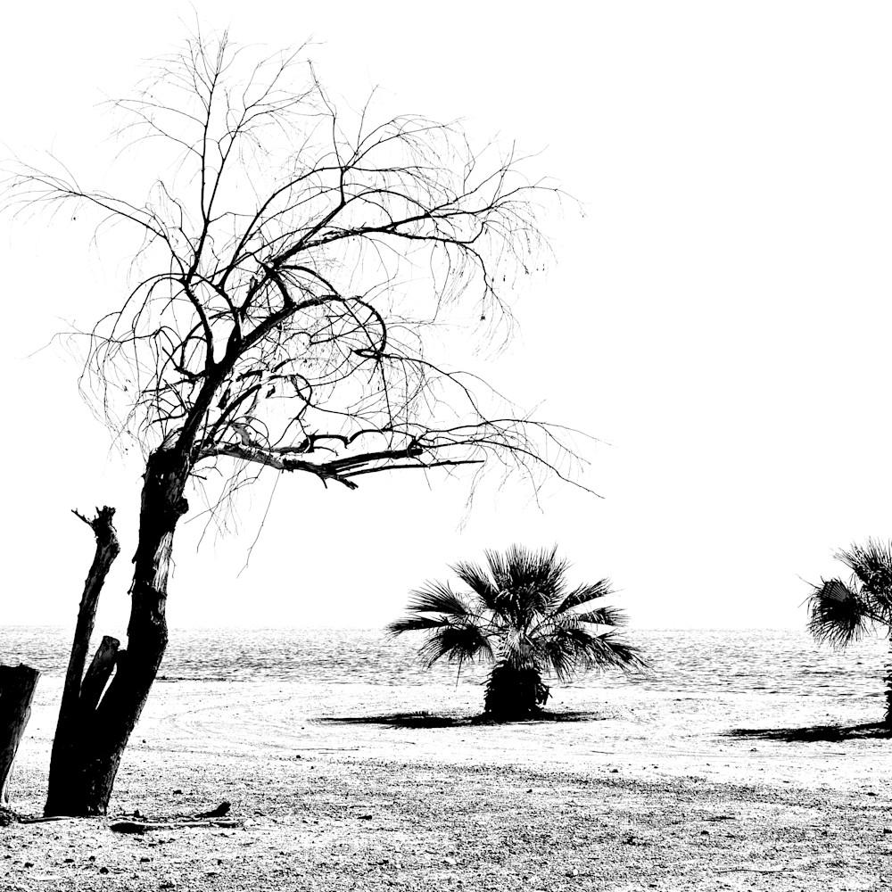 Salton sea stark landscape california tznikc