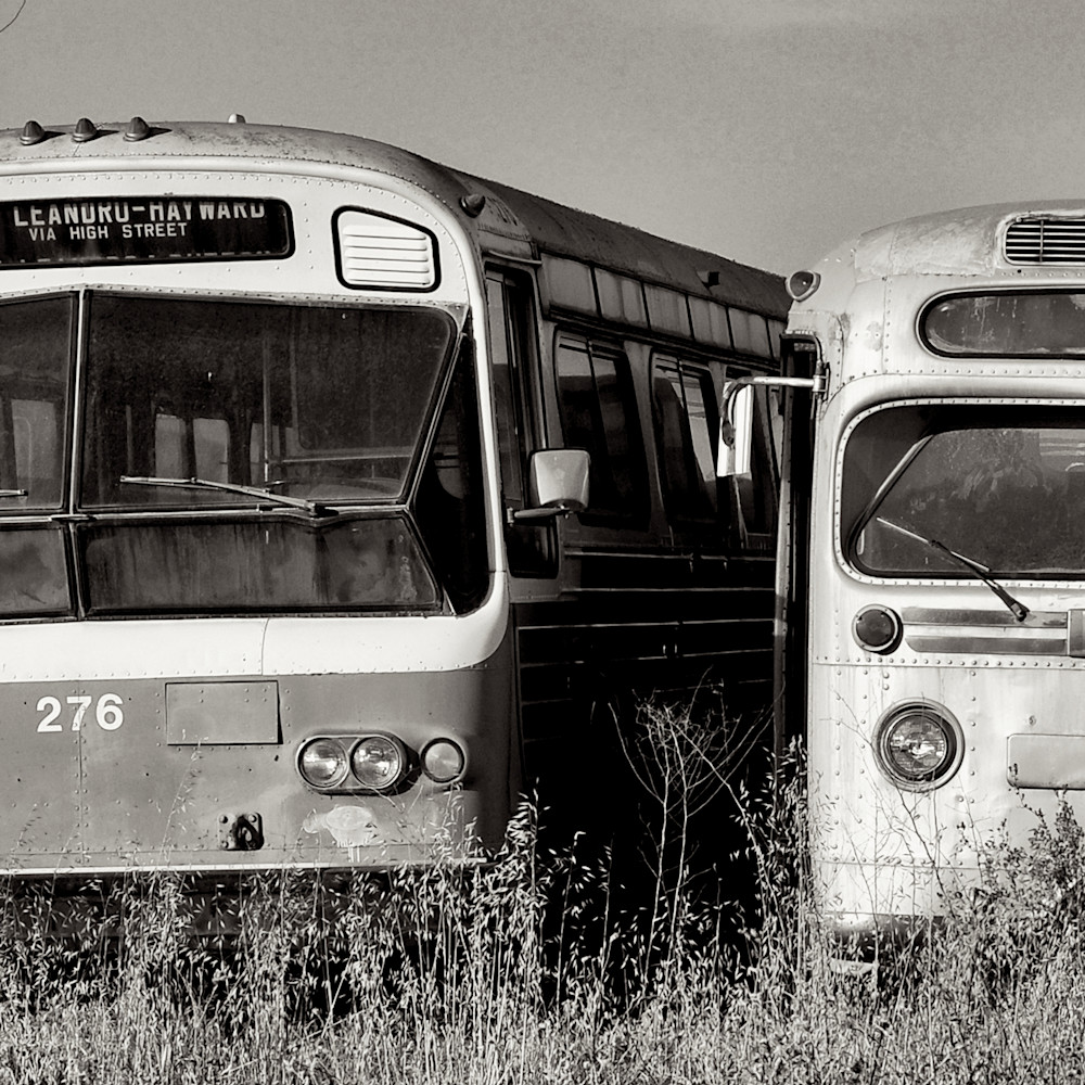 Vintage tour buses california panorama wbt1ue