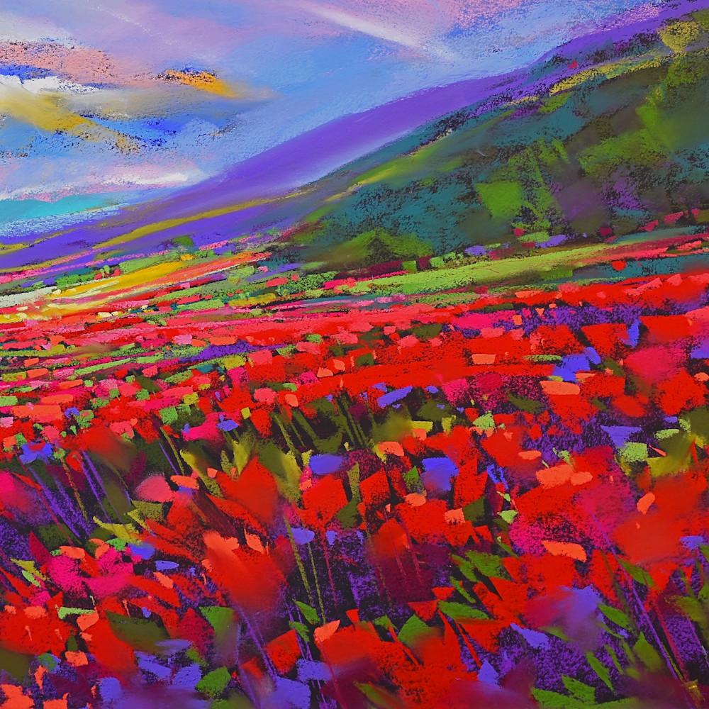 Crimson fields xsn4ah