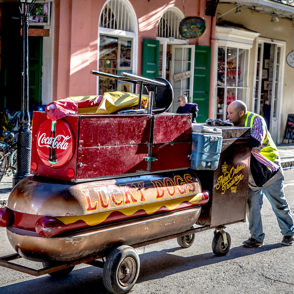 Lucky dog new orleans 2017 gs762w