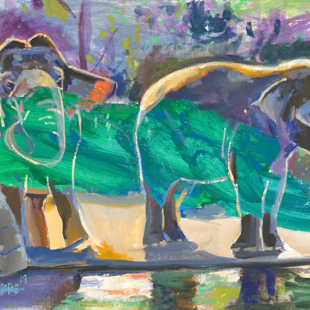 Elephants at the zoo large vwak7b