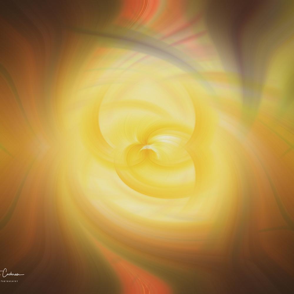 Sunlit rose twirl qewdfb