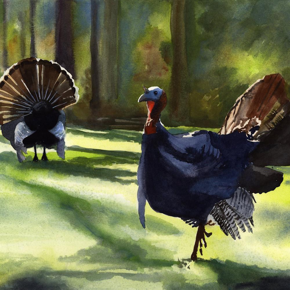 Two turkeys asf print yvud6w