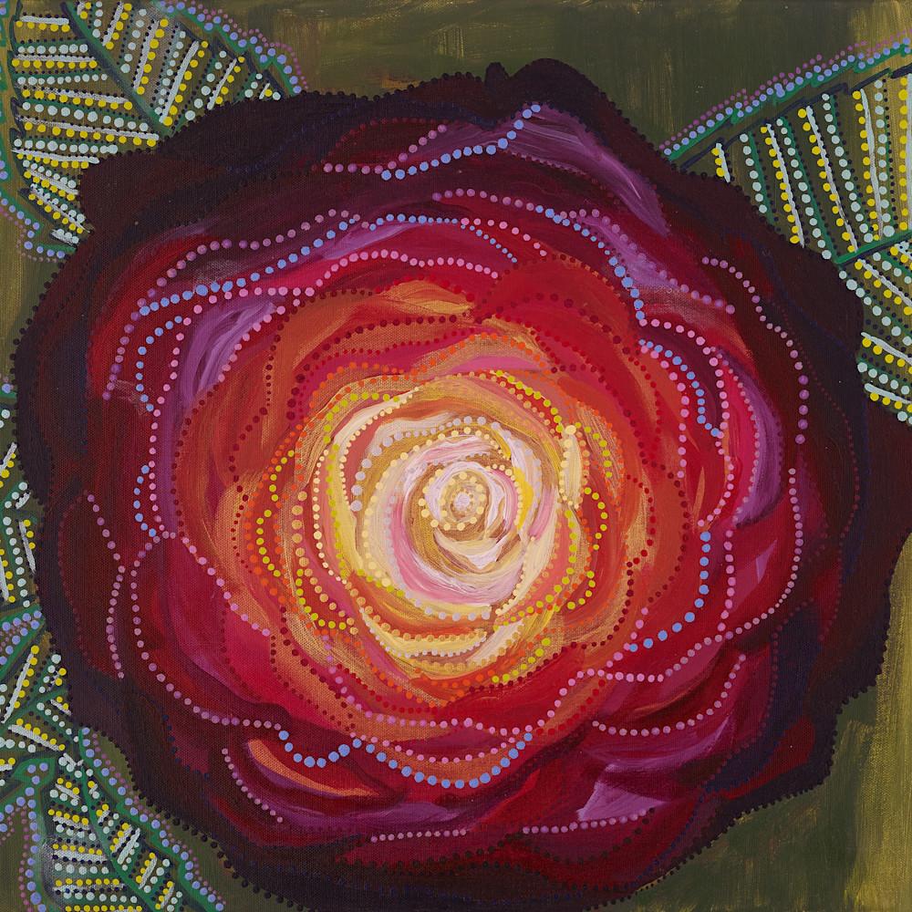 Red rose k8ca37