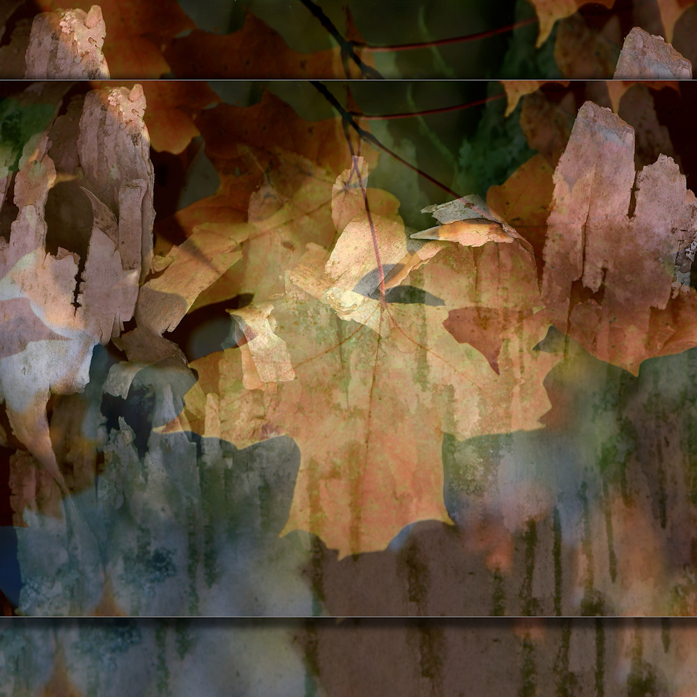 Abstract leaf 3d r3dhhb