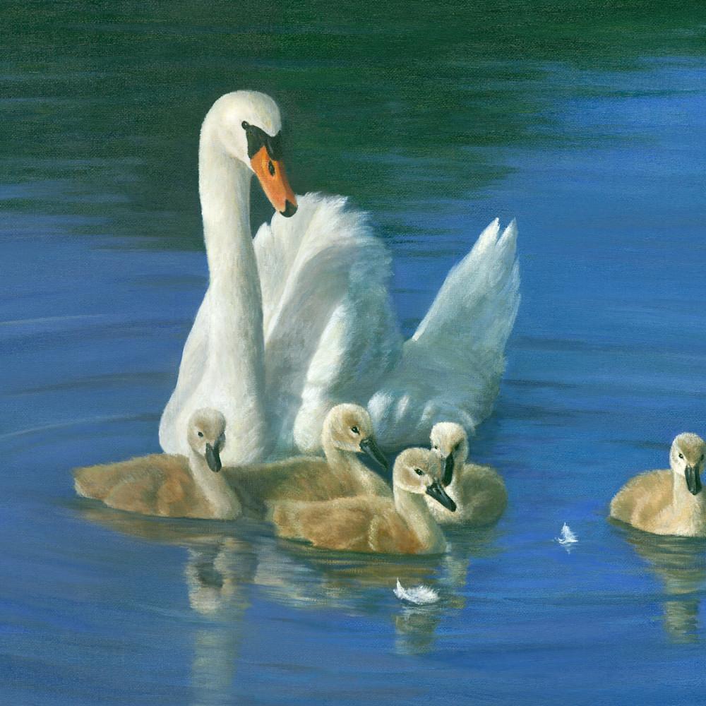 Swan babies blue18x24 s6kyg9