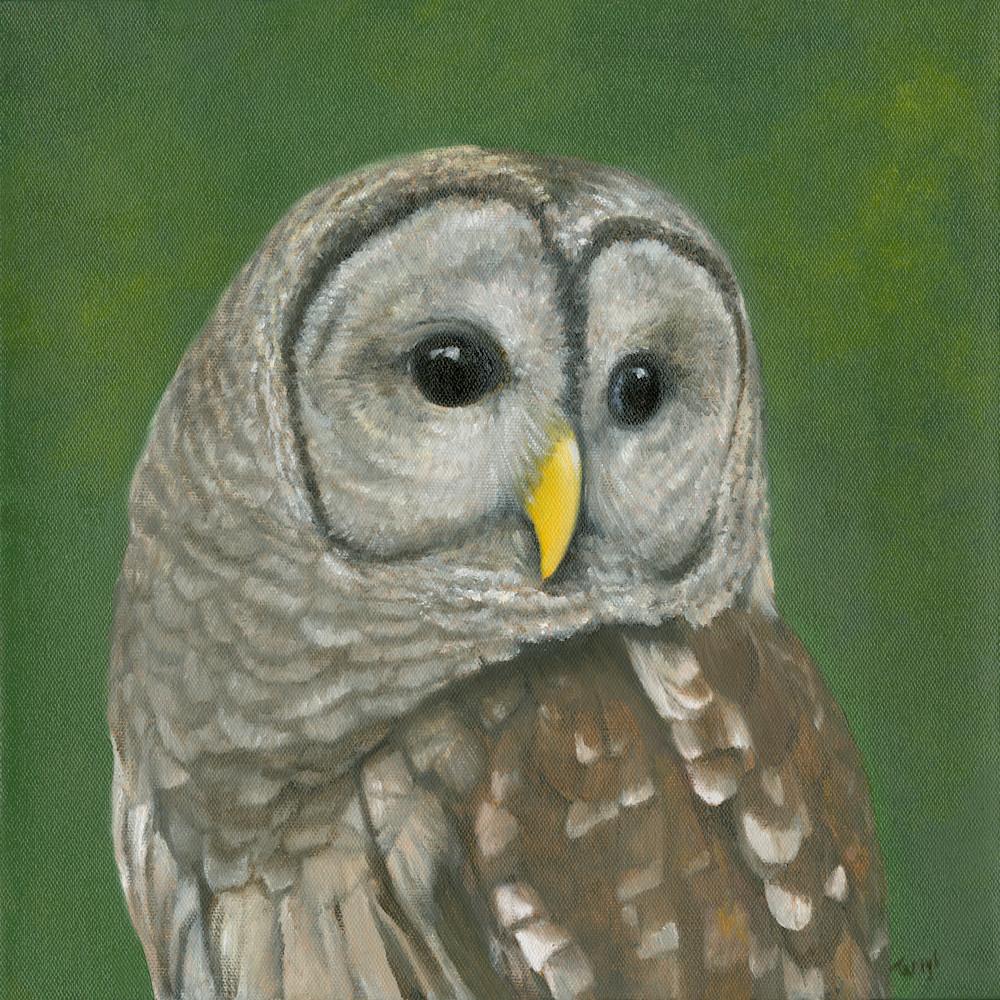 Owl jqmbvh