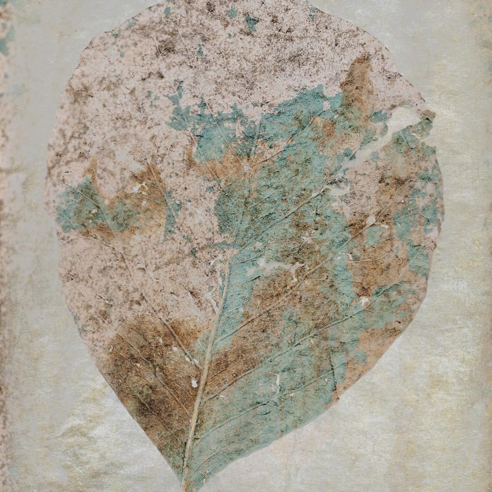 Blended leaf tb0gzu