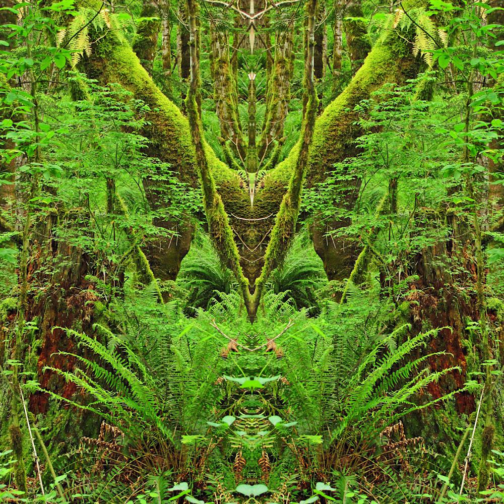 339 img 0176b mirror 0511 ifhuva