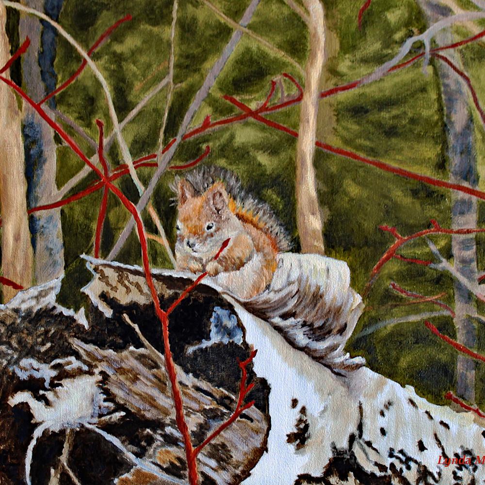 Redsquirrel toprint 16x21300dpi tikiox