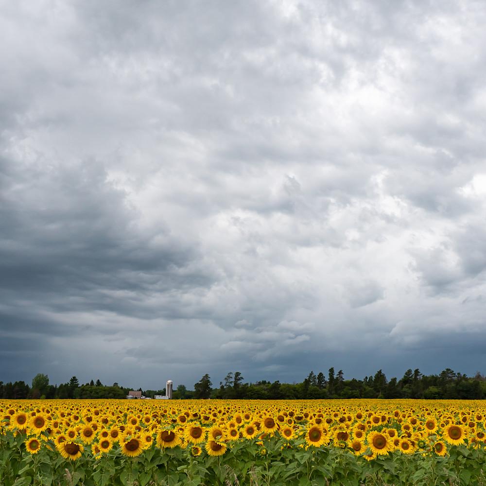 Sunshine when it rains 4 c9wv89