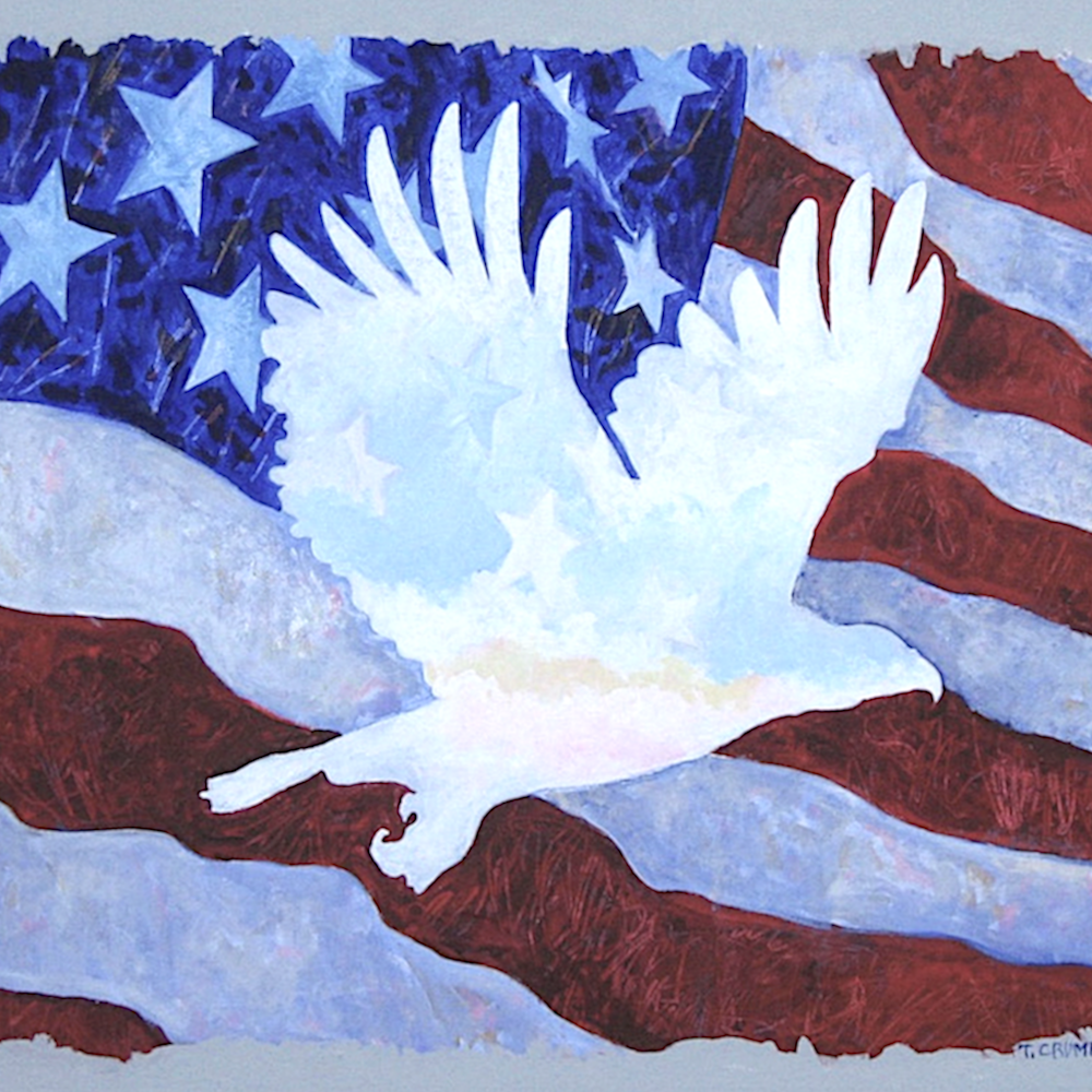 Eagle in flag s70tab