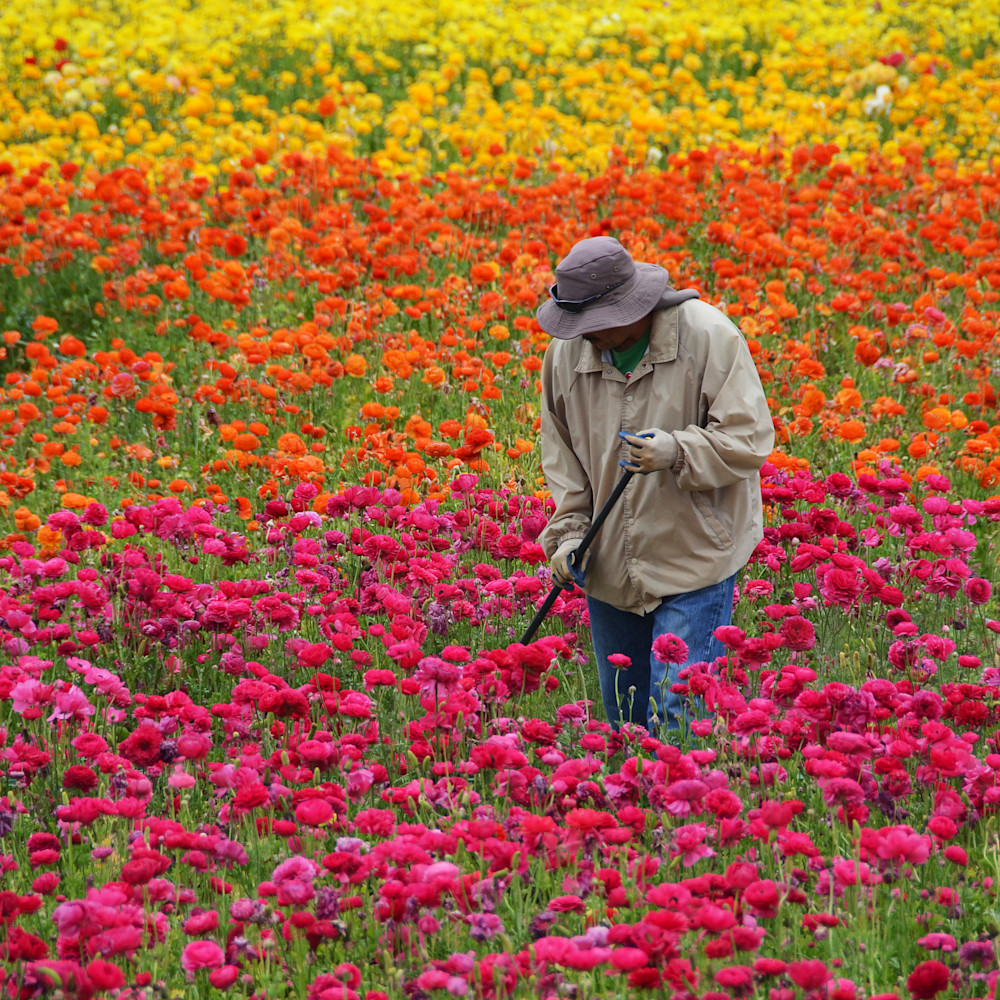 Gardener sbppmx