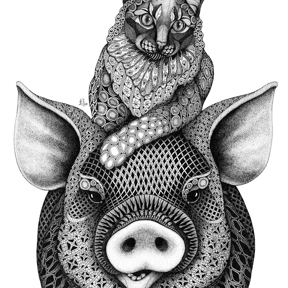 Max maisey pig cat nmtwln