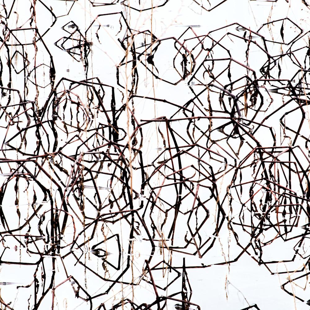Brain scramble wvmhrh