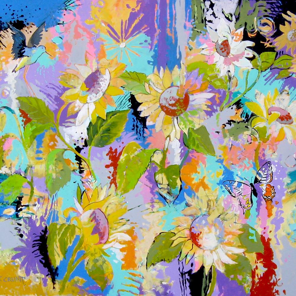 Field of sunflowers cd9evq