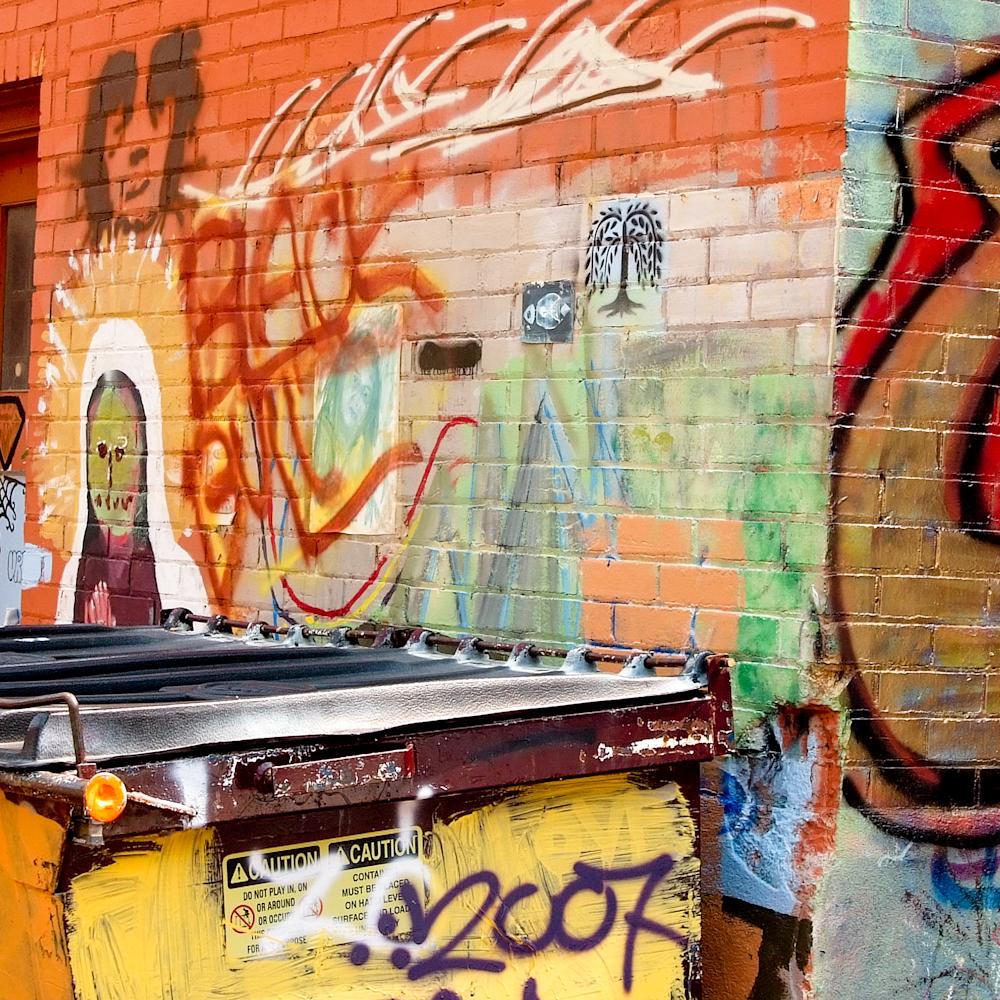 Art alley rapid city sd pano npo1u1