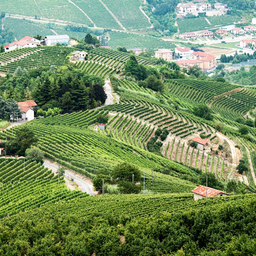 Northern italian vineyards aerial xyyxg9