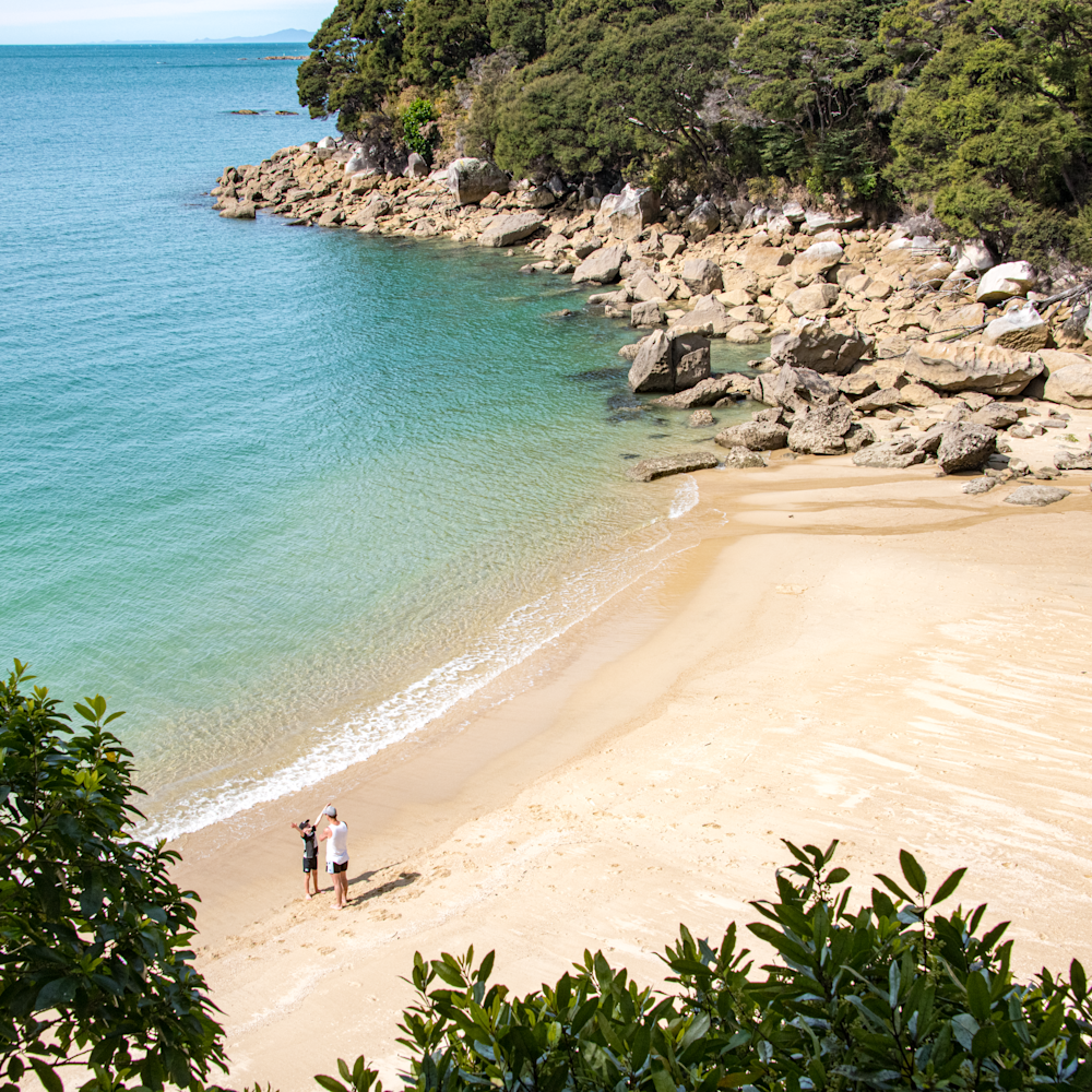 Miniature beach abel tasman park nz dyunxv