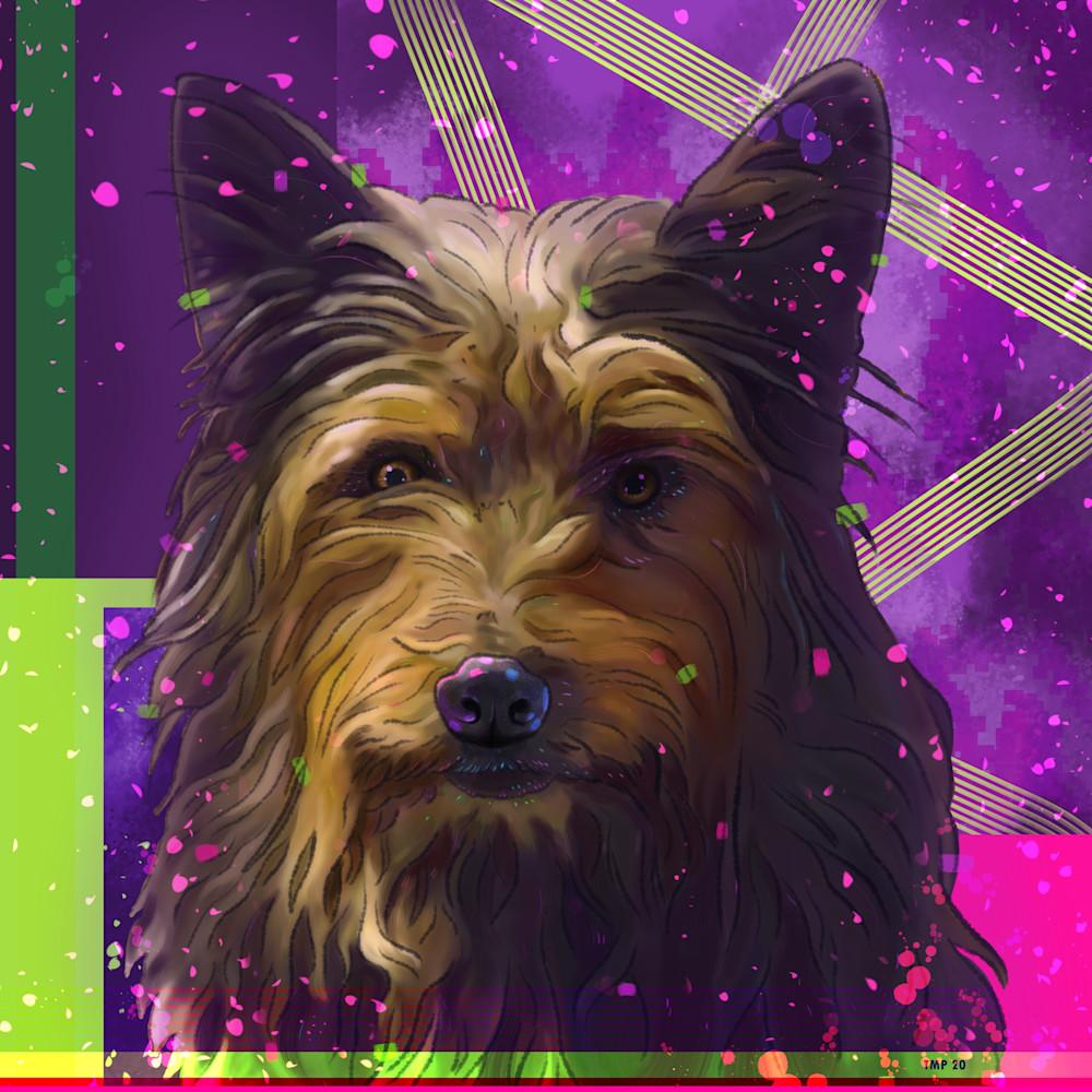 6 22 20 digital drawing commission joey damarco dog portrait jpeg version zqxfav