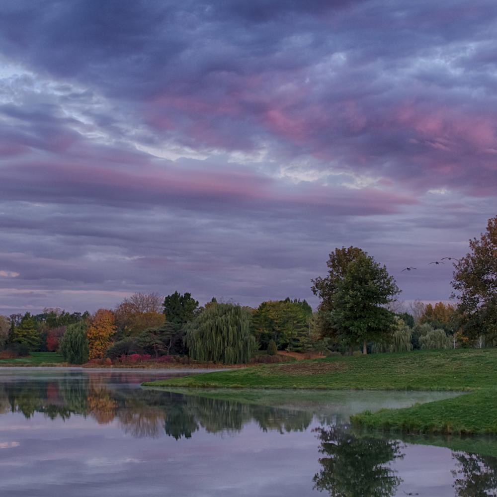 Dawn at the garden lskehb