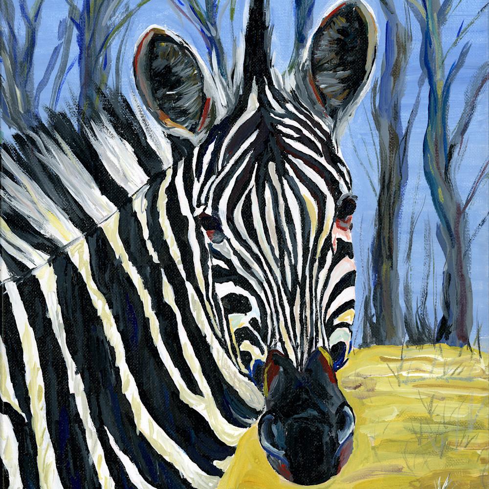 Zebra portrait lc5zhy
