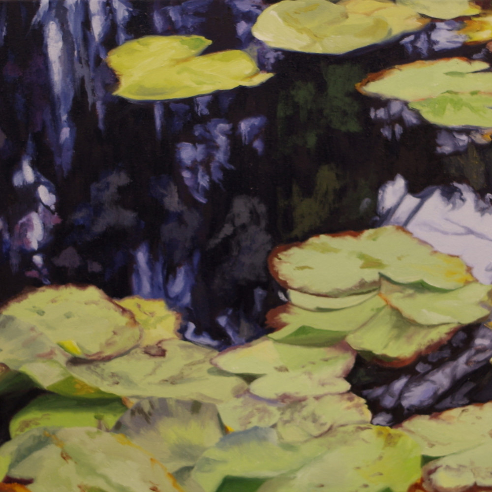 Water lilies in france f9iasy