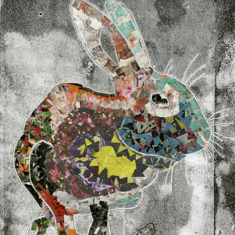 Bunny collage ooxkyd