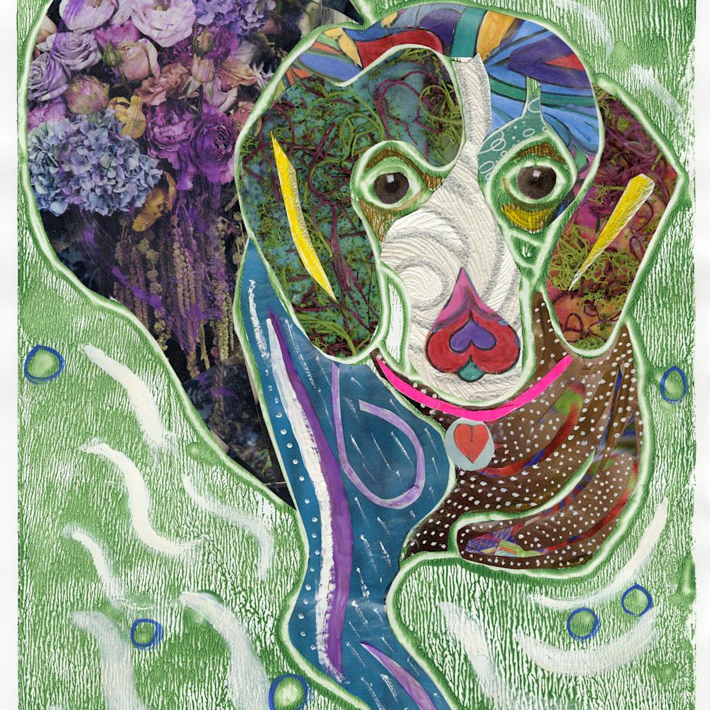 Sweet hound 2 j4a9mn