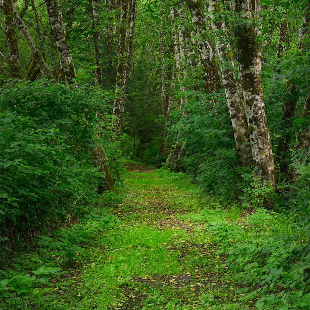 Summer preachers slough trail washington 2020 2 hwgavx