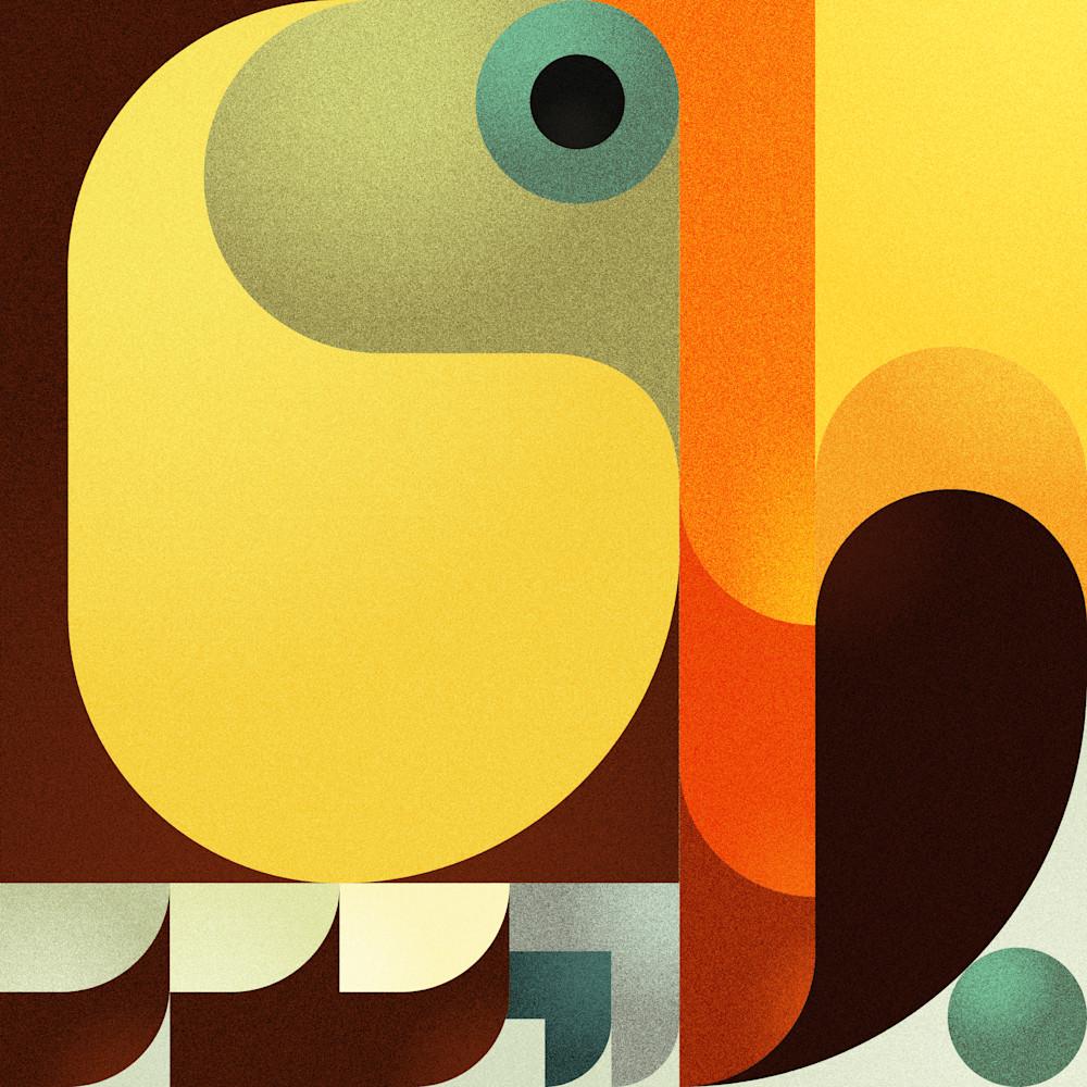 Toucan squaredhd viyoaa
