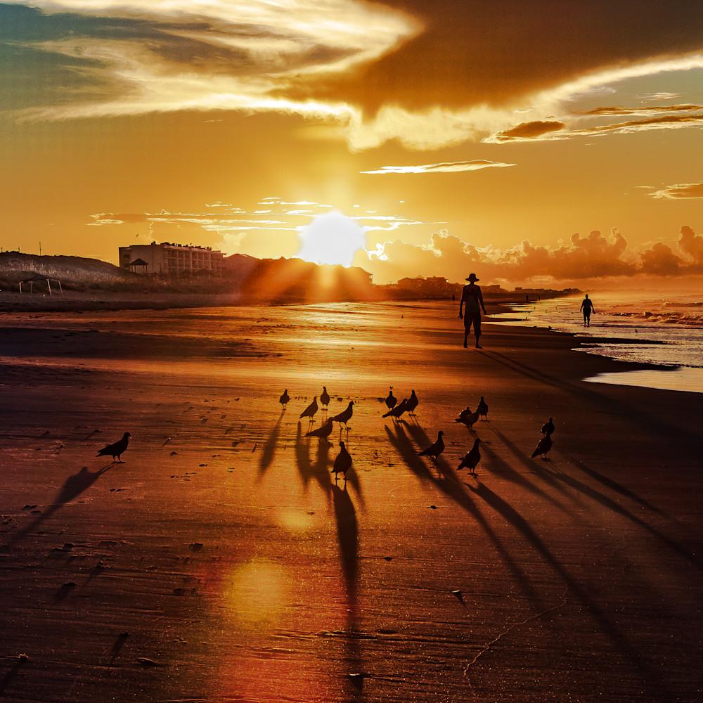 Birds on the beach 2 cw6mwa