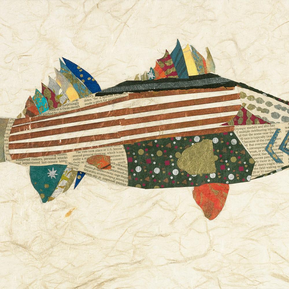 Brian orr stripe bass forweb fvu0nv