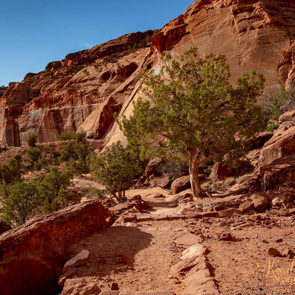 Canyon de chelly view 3568 u 19 koral martin i8yd8k
