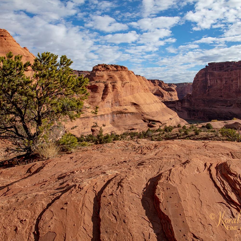 Canyon de chelly view 3574 u 19 koral martin k688n4