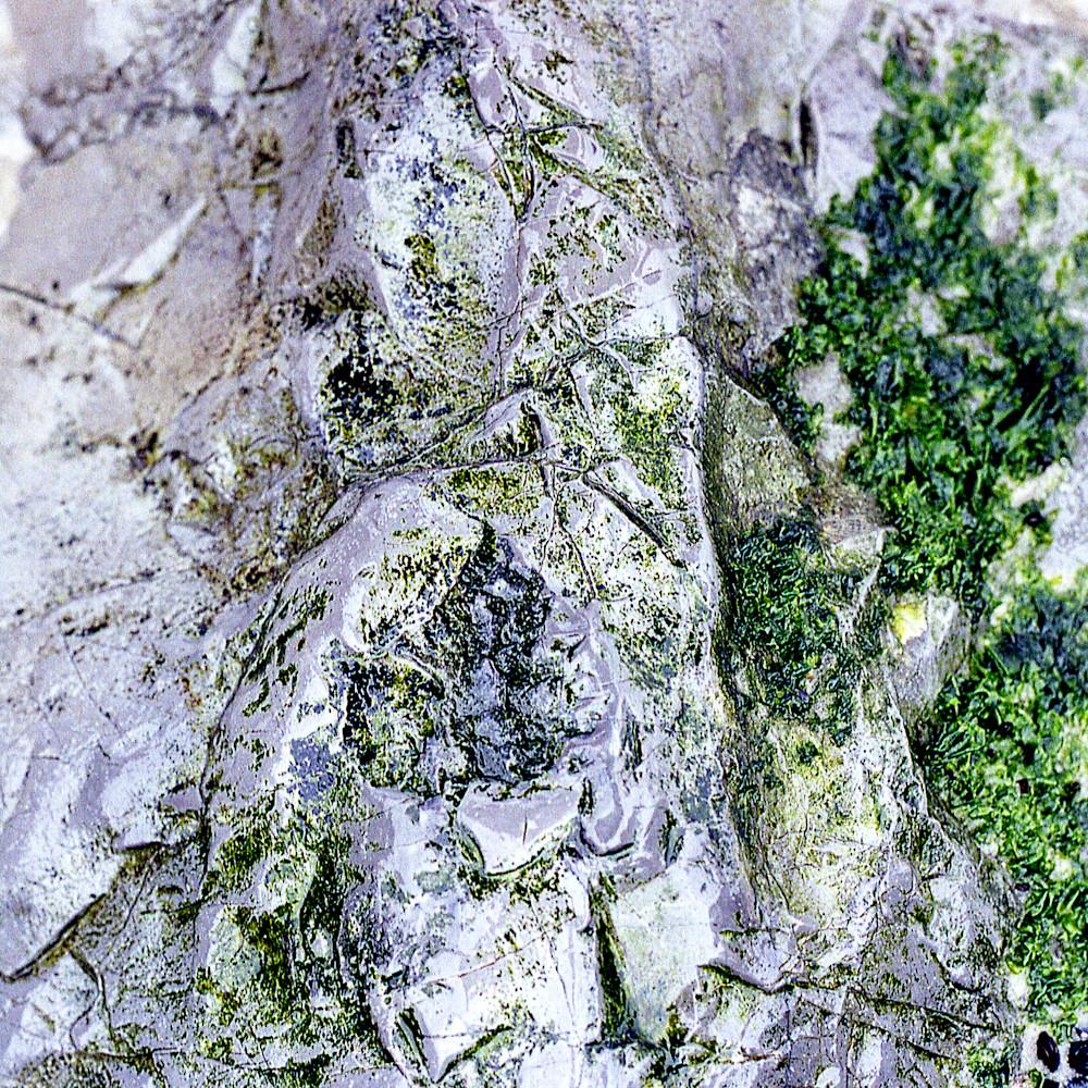 Closer earth long beach rock acny2116 nature photography sherry mills print 2 beuzta