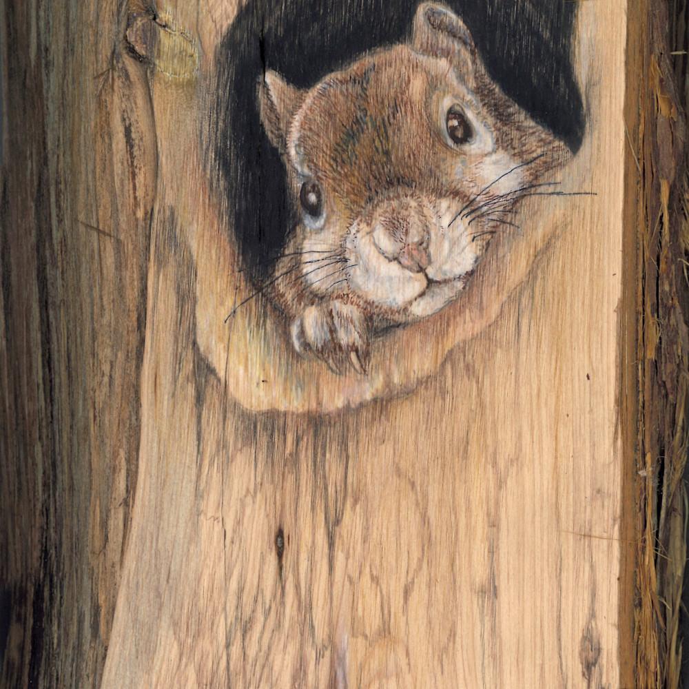 Squirrel vertical 1 n1miby