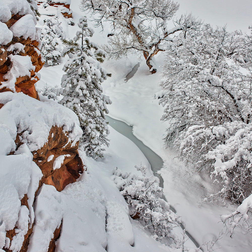 Winter creek charlie  4x5 hntqpn