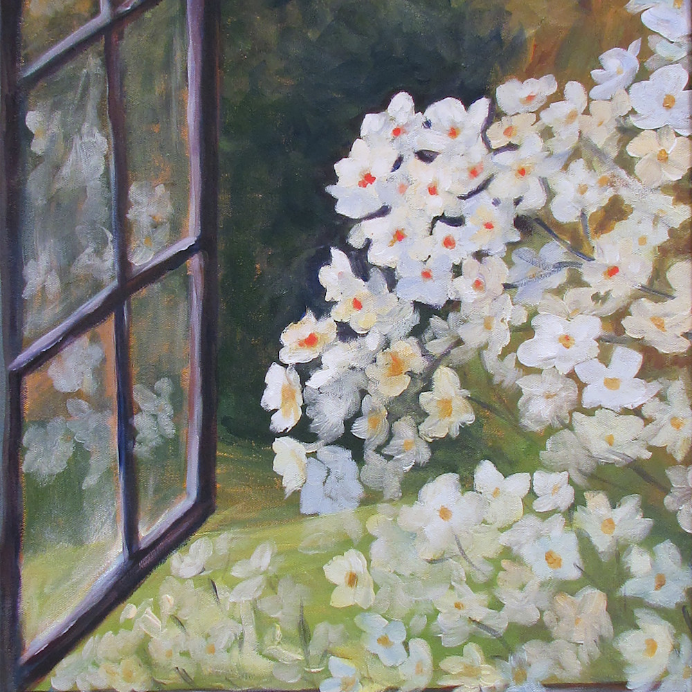Pr flowers at my window jpffvl
