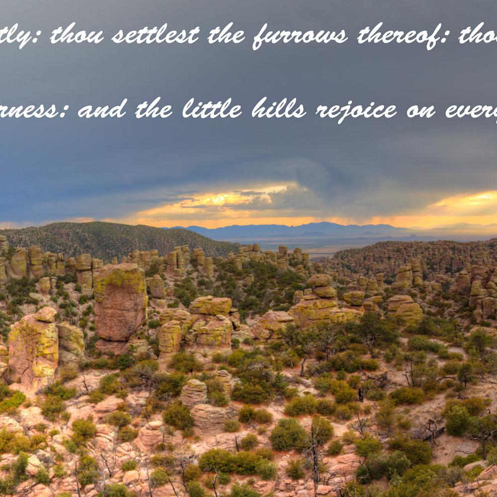 Chiricahua panorama with psalms jlyrya