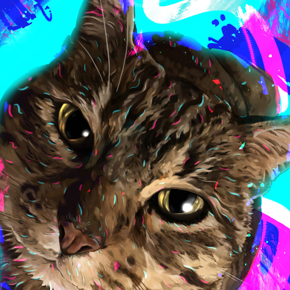 9 4 20 digital drawing commission laura pieczynski cat portrait bitty b jpeg version j1btxy