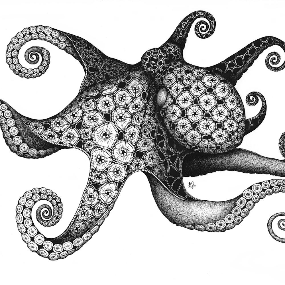 Octopus g64qkm