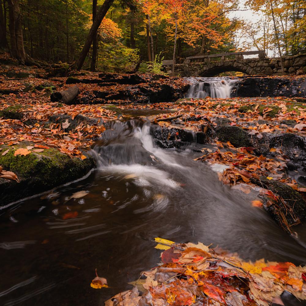 Autumn at vaughn woods 1 ilsmmq