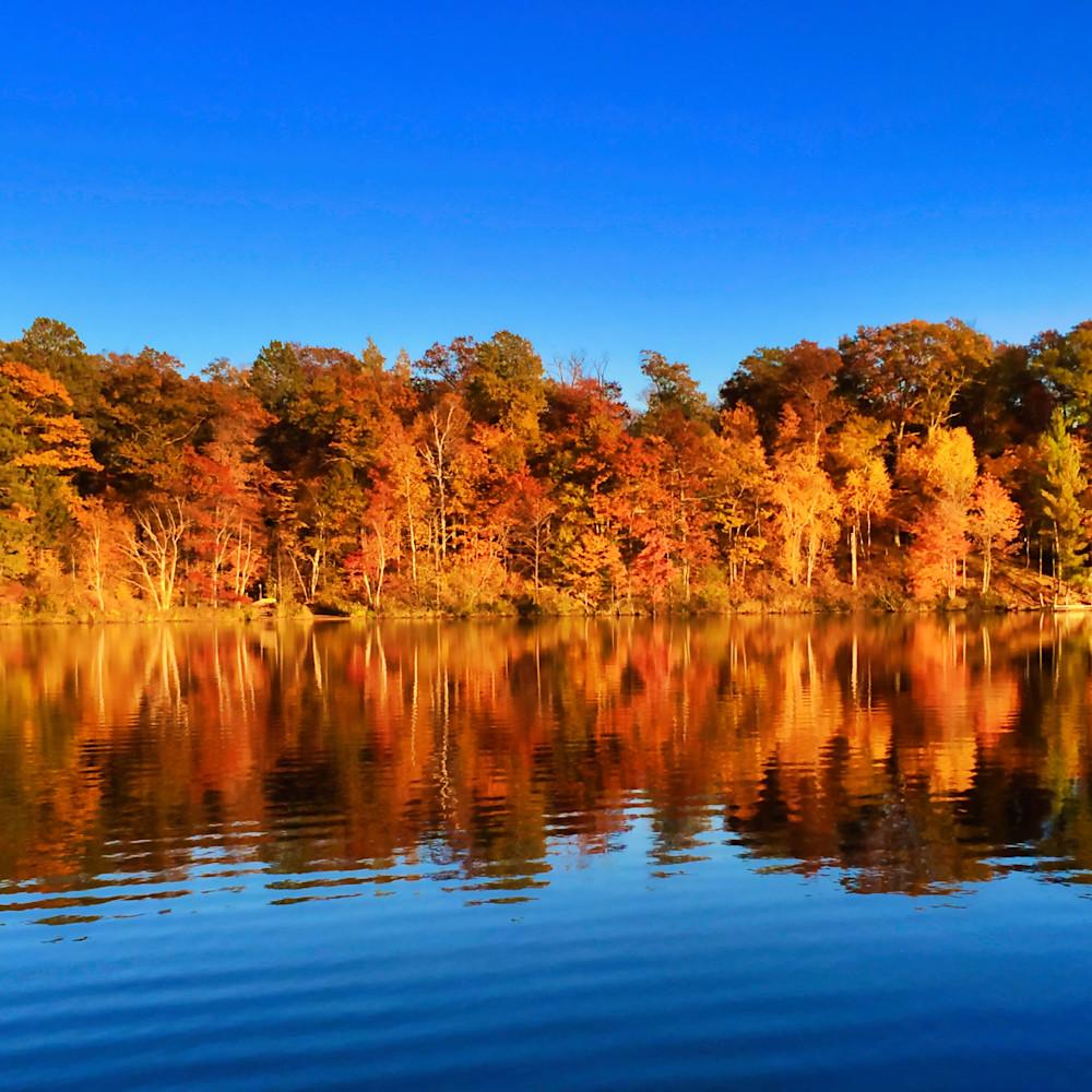 Fall magic deerwood 4 qcu4vp