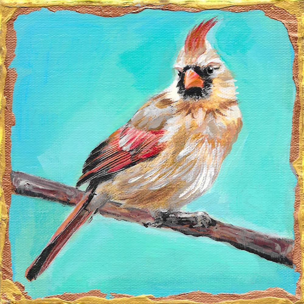 Female cardinal m7bjfp