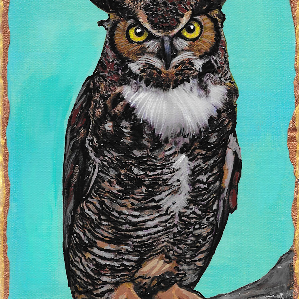 Great horned owl h64aw7