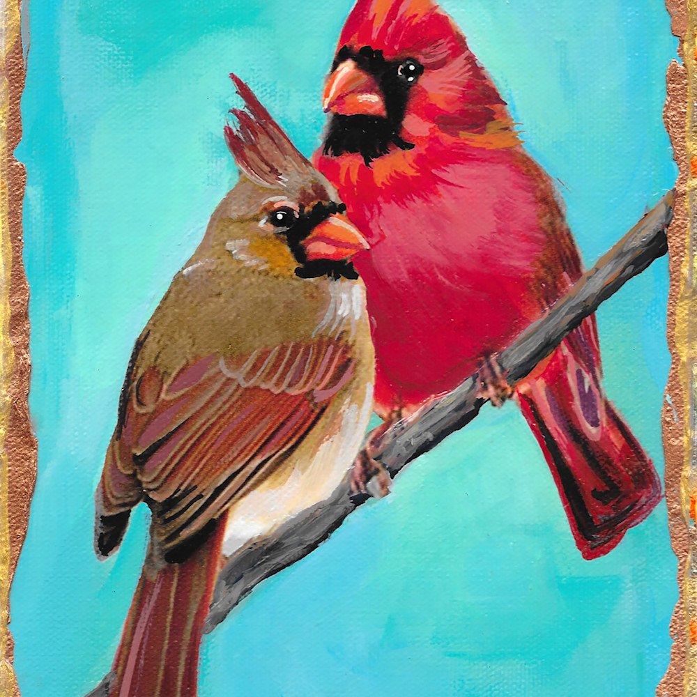 Male and female cardinals sq6s0i