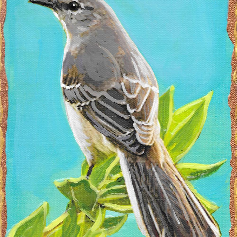Mockingbird mnaqyc