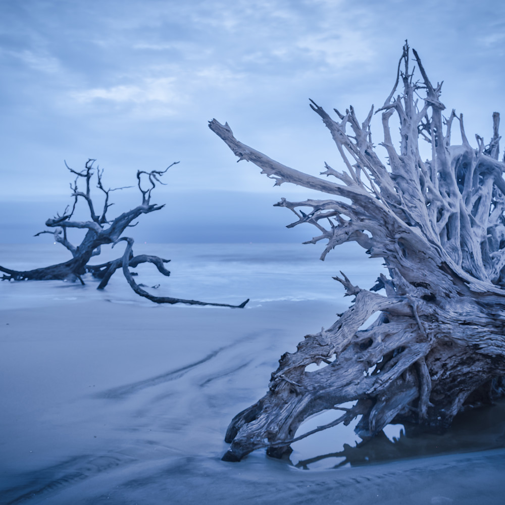 Soft morning light at driftwood beach ybh3xu